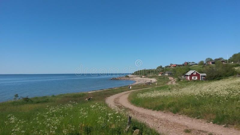 Plaża na Öland, Szwecja, morze bałtyckie zdjęcie stock