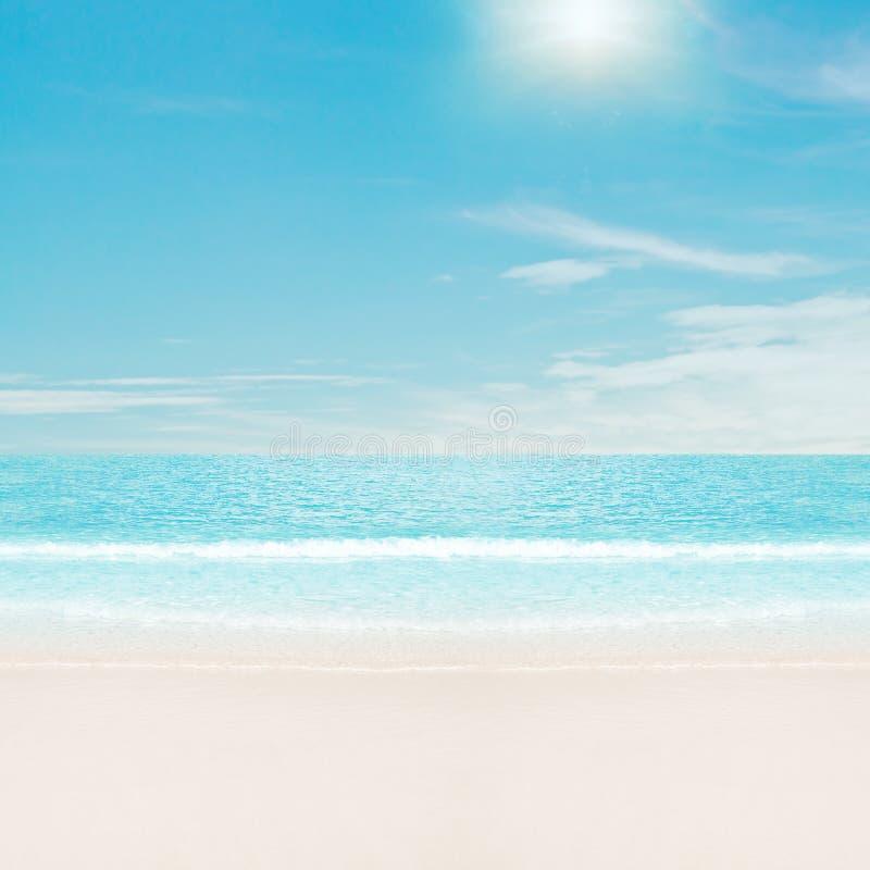 plaża nad słońcem tropikalnym zdjęcia royalty free