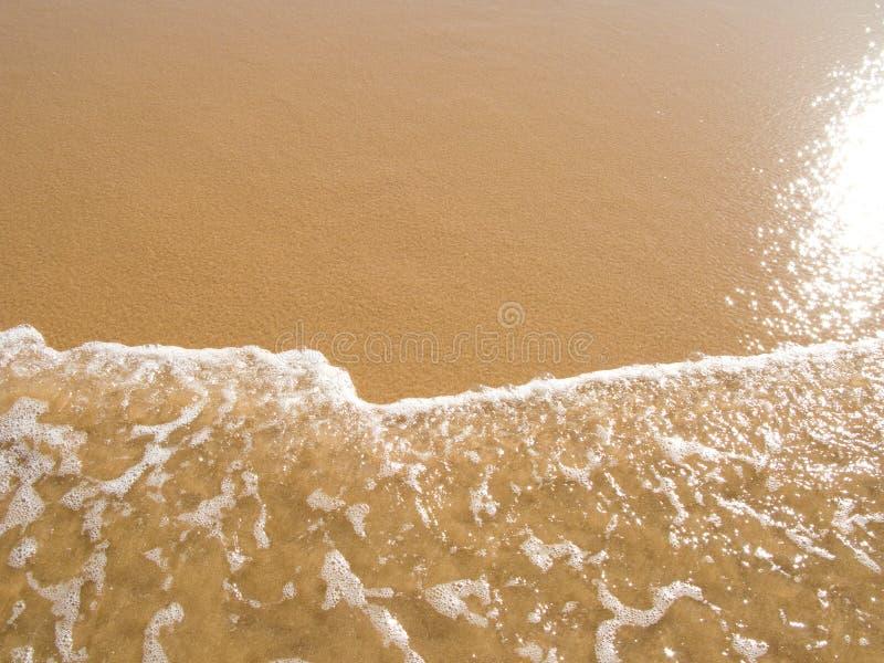 plaża odzwierciedlający słońce mokrego piasku. fotografia stock
