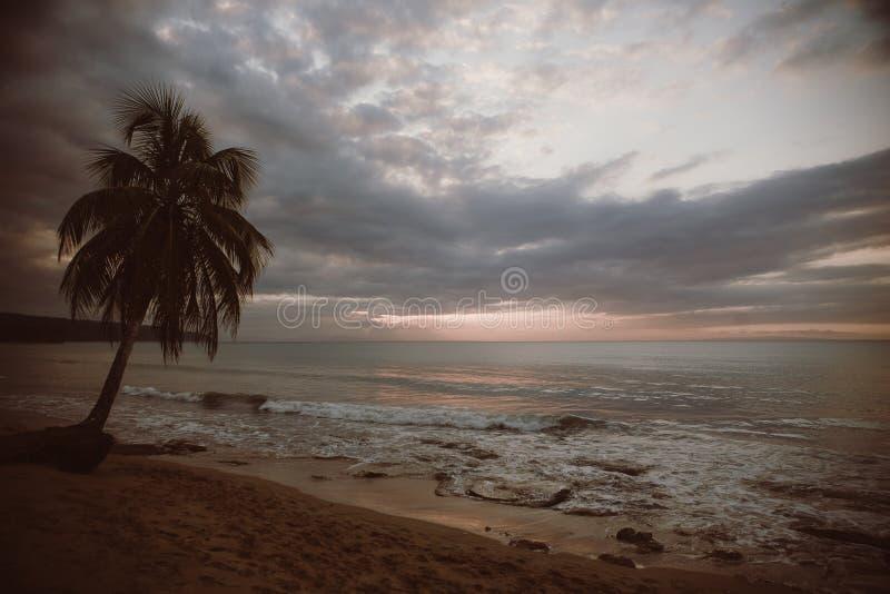 Plaża opuszczona zdjęcia royalty free