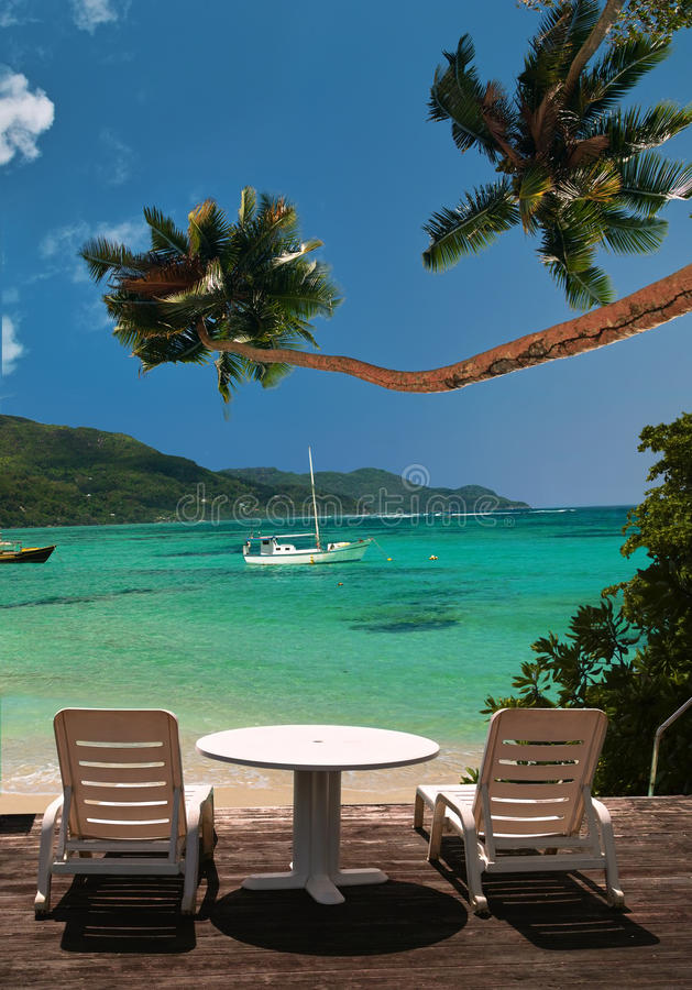 plaża przewodniczy raju palmowego drzewa fotografia royalty free