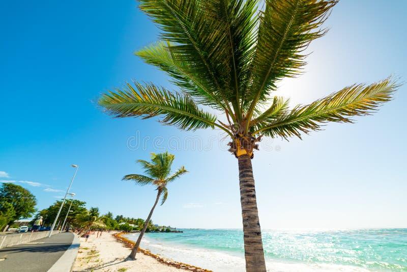 Plaża Raisins Claira na Saint Francois na Gwadelupie zdjęcia stock
