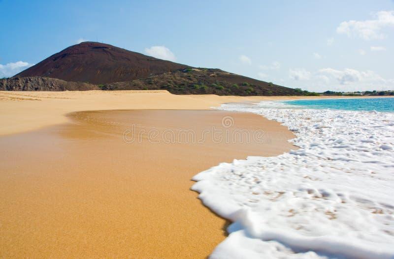 plaża tęsk fotografia stock