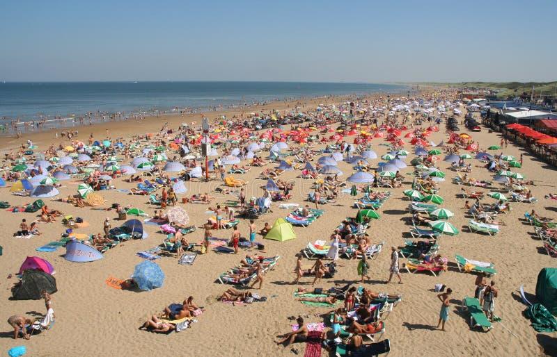 plaża tłocząca. zdjęcia royalty free