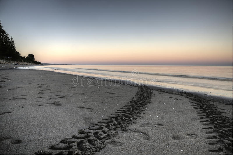 Plaża Tropi Collingwood Nowa Zelandia zdjęcie royalty free