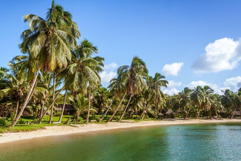 Plaża tropikalna zdjęcia stock