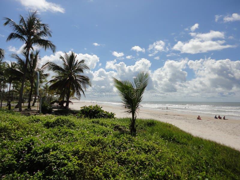 Plaża w ilheus zdjęcie stock