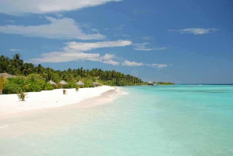 Plaża w Maldives obraz stock