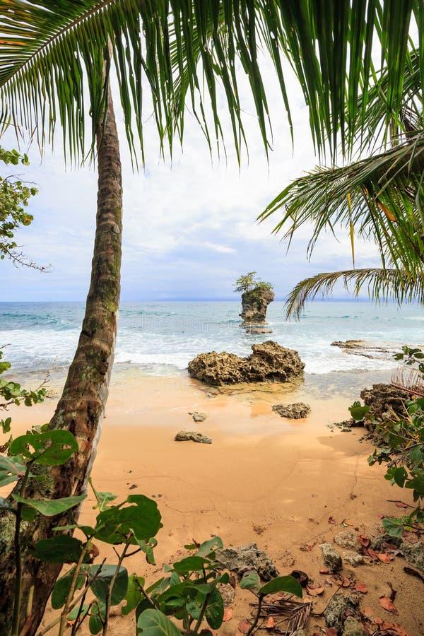 Plaża w Manzanillo Costa Rica zdjęcia royalty free
