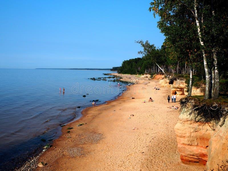Plaża w obszarze wiejskim, Latvia obrazy stock