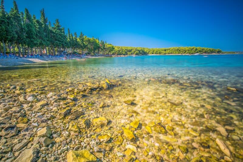 Plaża w Supetar miasteczku na Brac wyspie z turkusu jasnego wodą, Supetar, Brac, Chorwacja, Europa obrazy royalty free