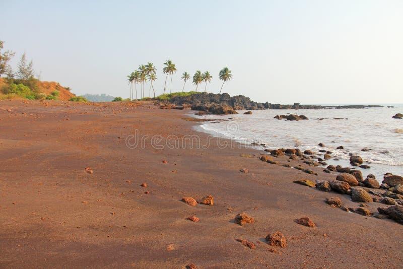Plaża z czarnymi drzewkami palmowymi i piaskiem Ciemnego brązu powulkaniczny piasek a obrazy royalty free