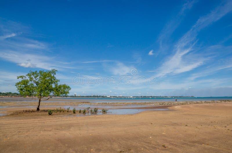 Plaża z niebieskim niebem behind i miastem zdjęcie stock