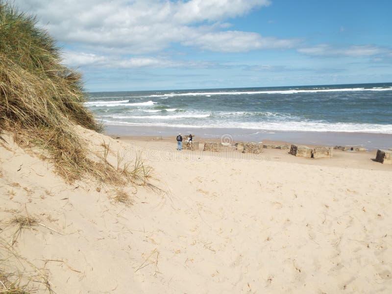 Plaża z piasek diunami fotografia royalty free