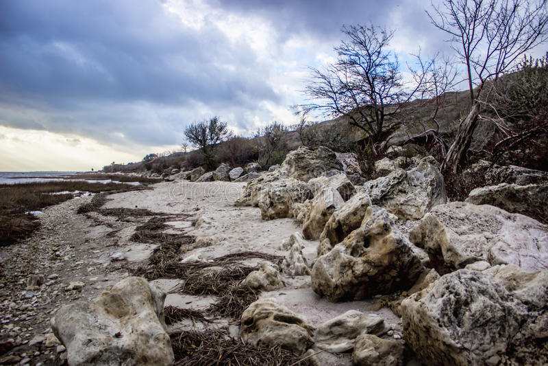 Plaża z piaskowem, krzaki przy zmierzchem obraz stock