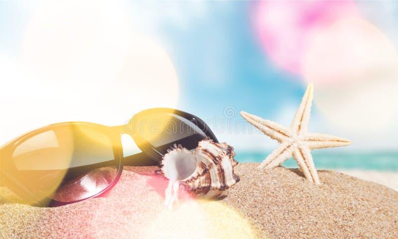plaże obraz stock