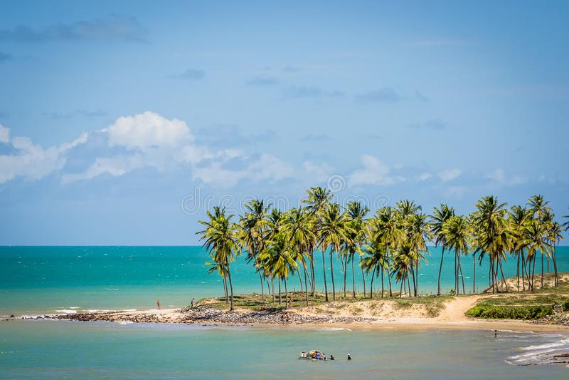 Plaże Brazylia, Maracajau - RN zdjęcia royalty free