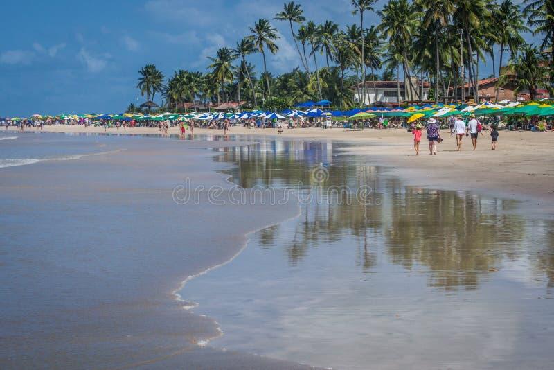 Plaże Brazylia, Porto - De Galinhas fotografia stock