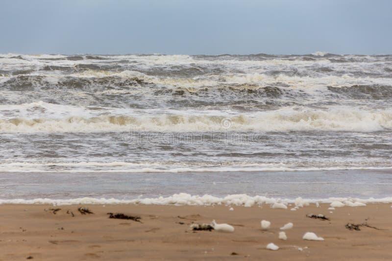 Plażowa †‹â€ ‹piana Egmond aan Zee holandie zdjęcie stock