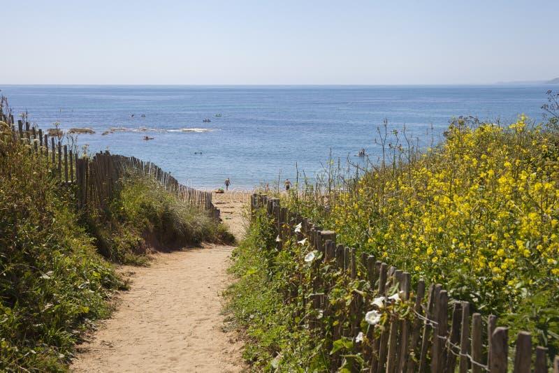 Plażowa ścieżka Thurlestone zatoka, Devon, Anglia obraz royalty free