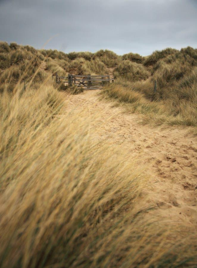 plażowa bamburgh ścieżka fotografia stock