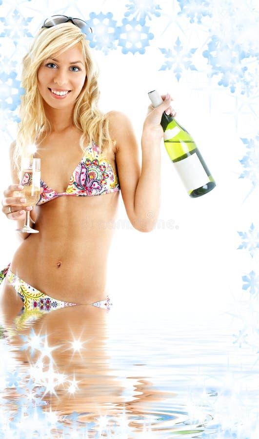 plażowa dziewczyny przyjęcia woda fotografia royalty free