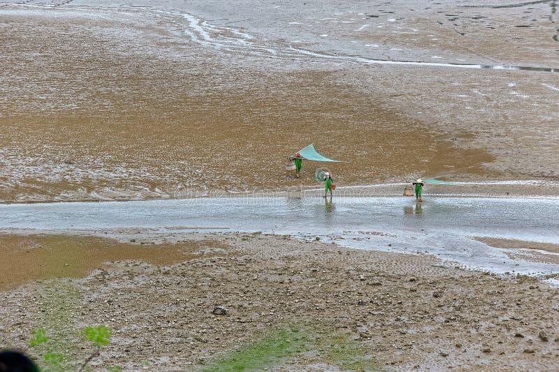 Plażowa grępla - Xiapu sceneria obraz royalty free