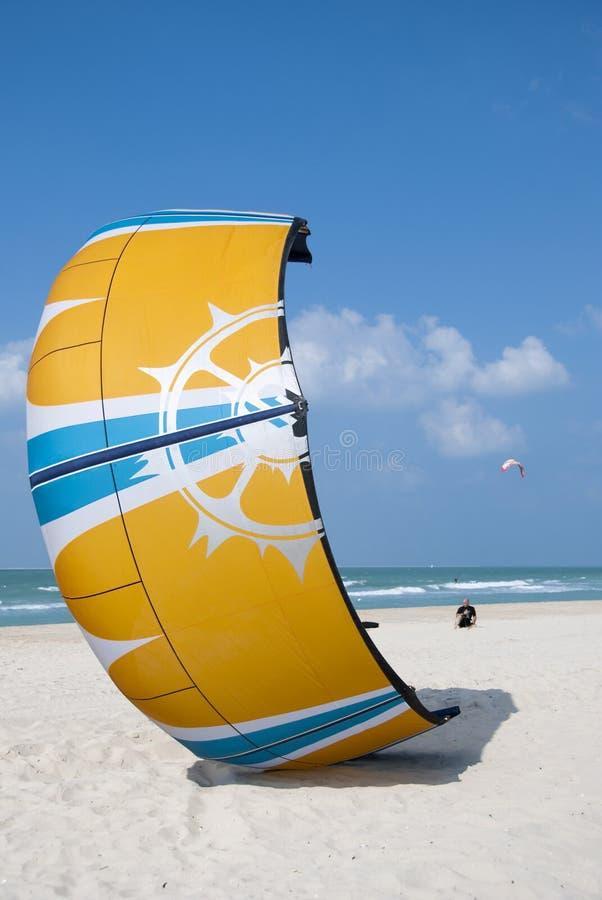 plażowa kania zdjęcia stock