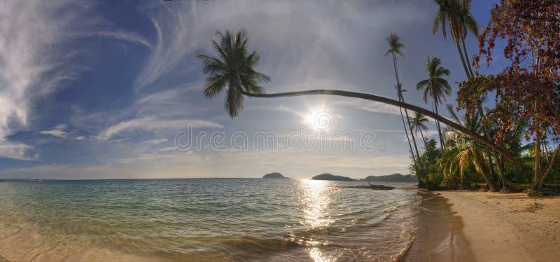 plażowa koh mak panorama zdjęcie royalty free