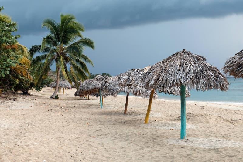 Plażowa linia pod drzewkami palmowymi w Kuba, Karaiby obrazy stock