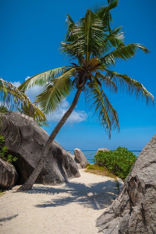 plażowa ' the pathway ' zdjęcie royalty free