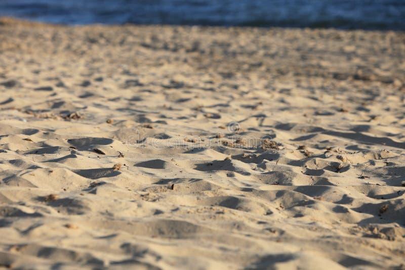 Plażowa piasek tekstura fotografia royalty free