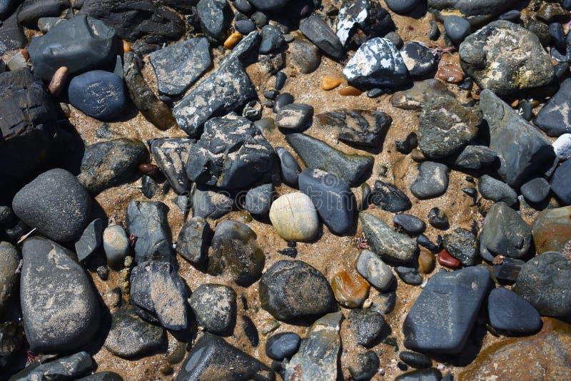 Plażowa rockowa basen tekstura obrazy royalty free