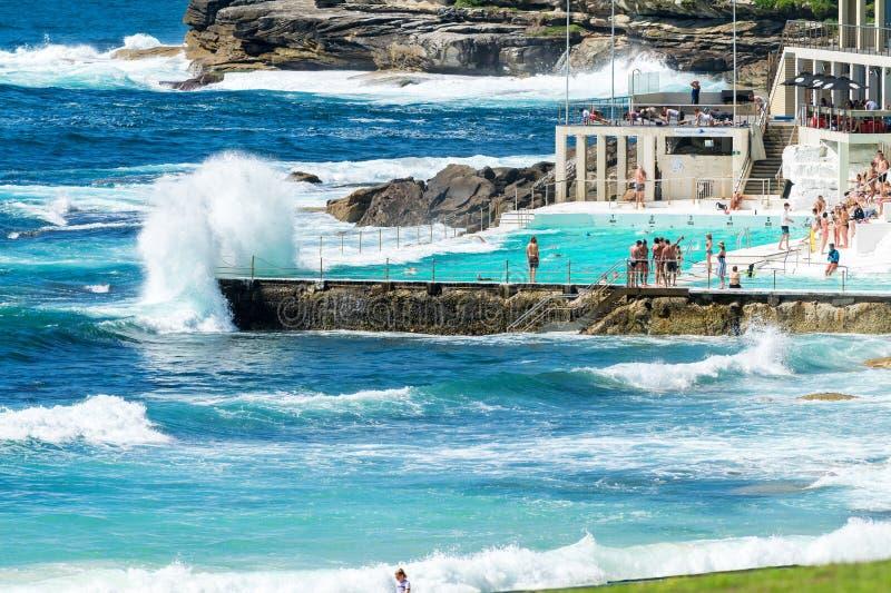 Plażowa scena: Rockowi Pływaccy baseny przegapia Tasman morze w Bondi obraz royalty free