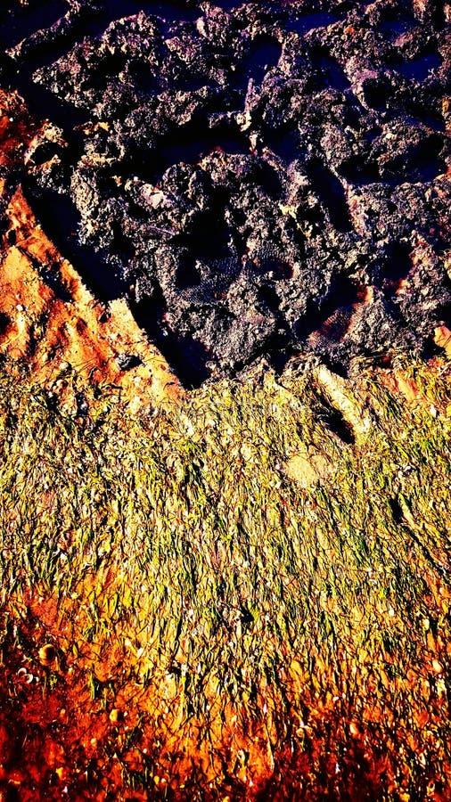 Plażowa tekstura obrazy stock