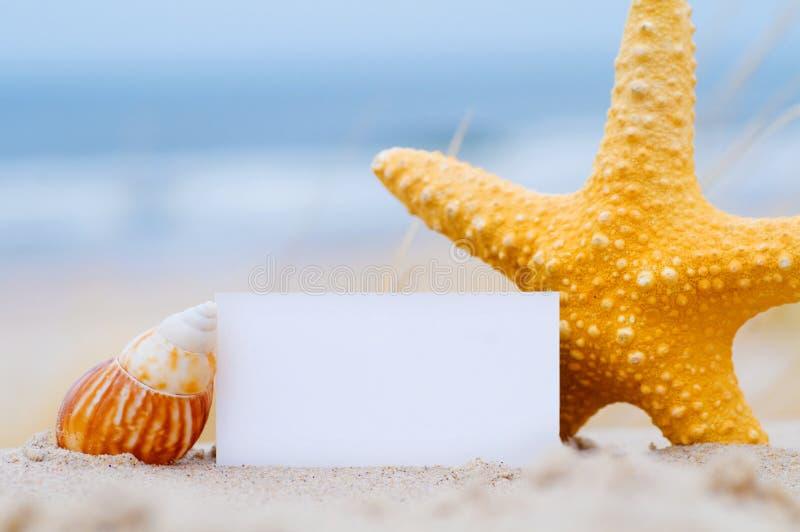 plażowe pustej karty skorupy obrazy royalty free