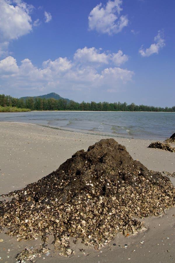 plażowego chao mai gubernialny Thailand trang obraz stock