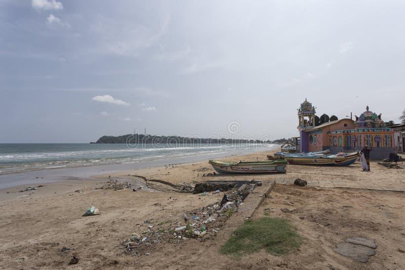 plażowego pary psa pierwszoplanowy lanka patrzeje sri tropikalny odprowadzenie zdjęcia stock