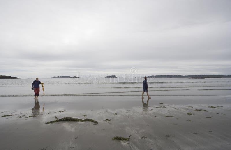 plażowej rodziny długi krajowy Pacific parka obręcz obrazy stock