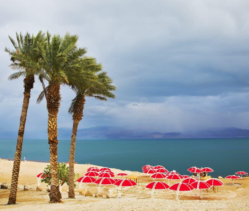 plażowi baldachimy obrazy royalty free