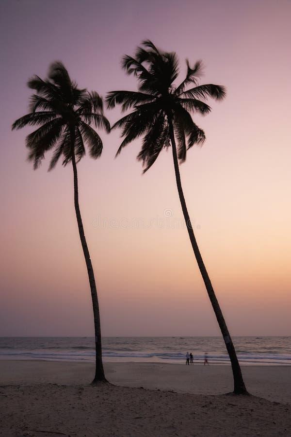 plażowi colva goa ind zdjęcia royalty free