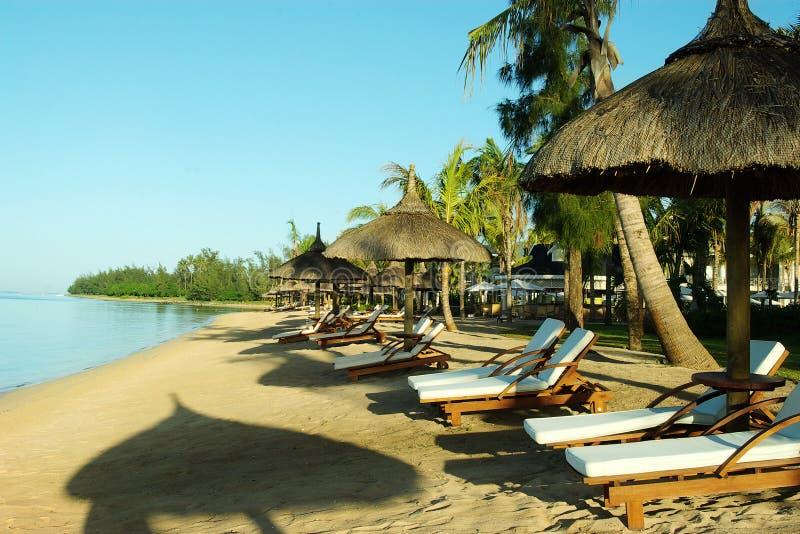 plażowi deckchairs zdjęcie stock