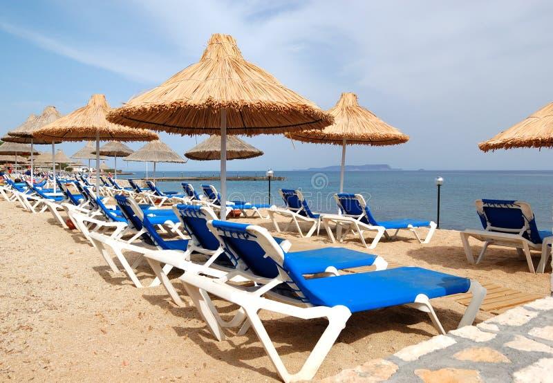 plażowi hotelowi luksusowi sunbeds fotografia royalty free
