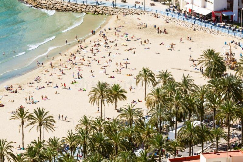 Plażowi ludzie palm zdjęcia stock