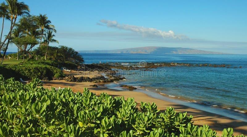 plażowi Maui brzeg południe fotografia stock