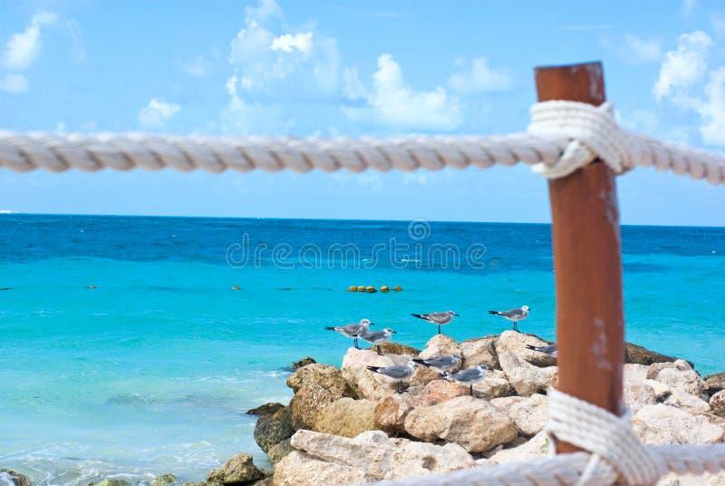 plażowi morze karaibskie wakacje zdjęcie stock