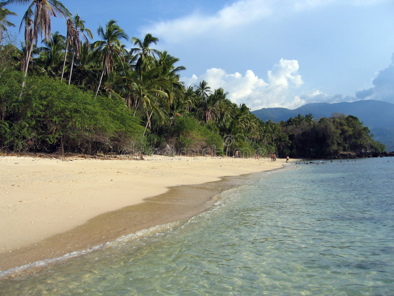 plażowi palmowi Philippines tropikalnych drzew fotografia royalty free