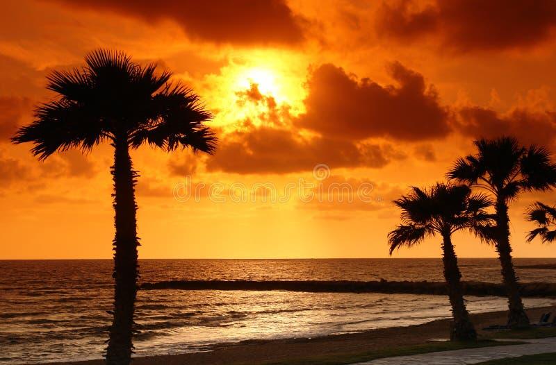 plażowi paphos zdjęcie stock