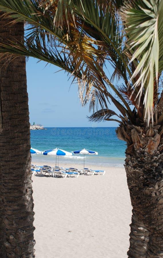 plażowi parasols zdjęcie royalty free
