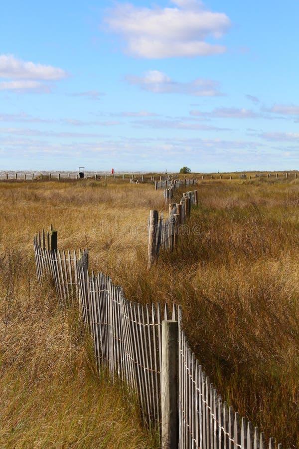 Plażowy łąkowy diuny ogrodzenie zdjęcie stock
